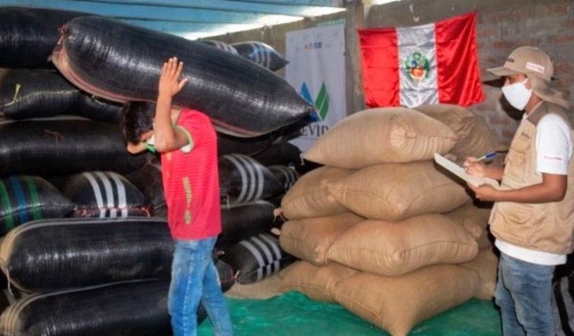 Café fino y orgánico de Ayacucho, orgullo del Perú
