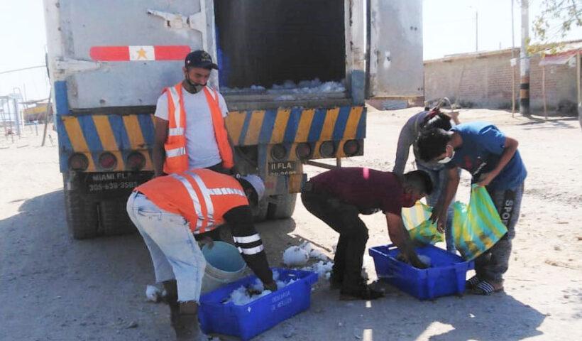 """Dos mil kilos de merluza fresca fueron entregados a la población de los AA.HH. """"San Martín Oriente"""", """"Trece de Julio"""" y """"Keiko Sofía"""" de Paita"""