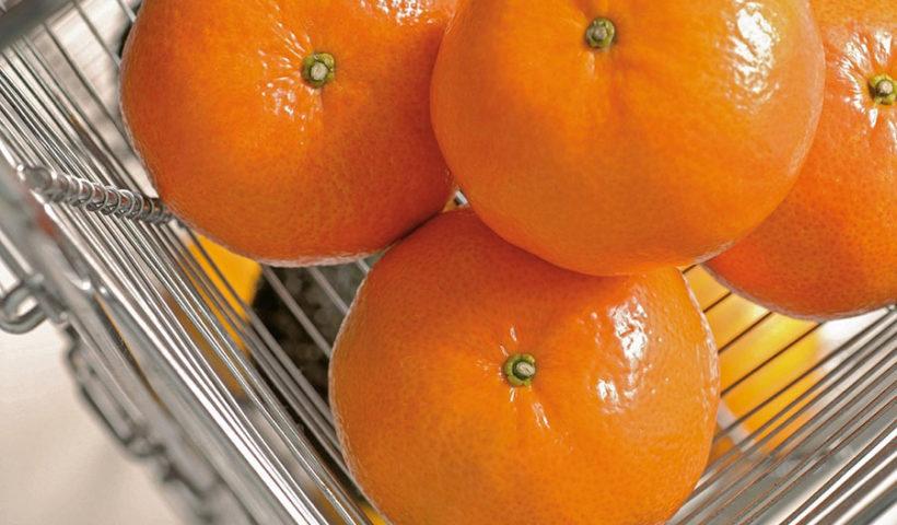 Mandarina peruana