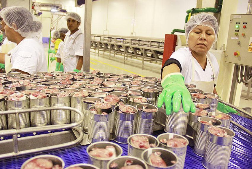 Pesca para consumo humano sufre caída del 40 % en primer semestre 2020
