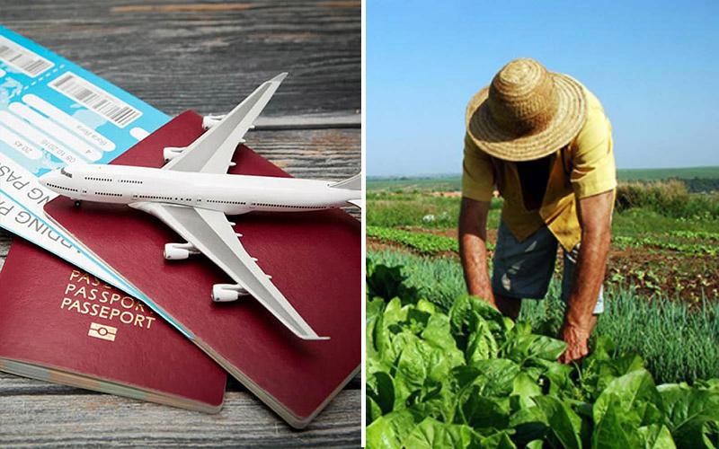 Luz verde para FAE Turismo y FAE Agro