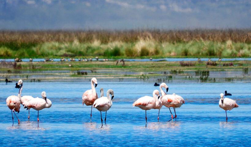 Votemos por Perú como mejor destino natural de Sudamérica