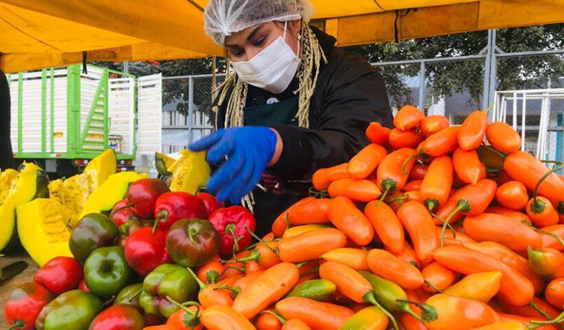 Minagri informó que cerca de 40 toneladas de diversas variedades de ají, rocoto y pimiento fueron comercializadas en los mercados itinerantes