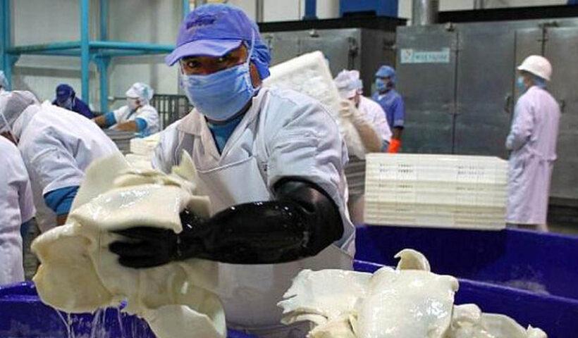 Principales compradores de calamar gigante provenientes de EE.UU. y Europa solicitaron a Perú la formalización de la flota artesanal del país