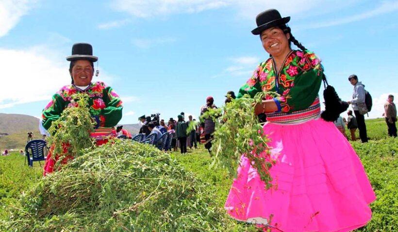 Congreso aprueba creación del Ministerio de Desarrollo Agrario y Riego