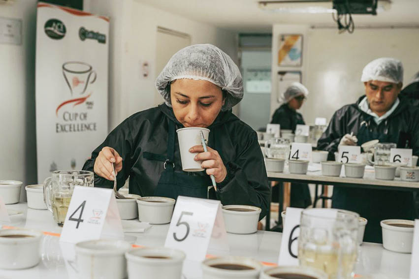 Este viernes se conocerá al mejor café peruano