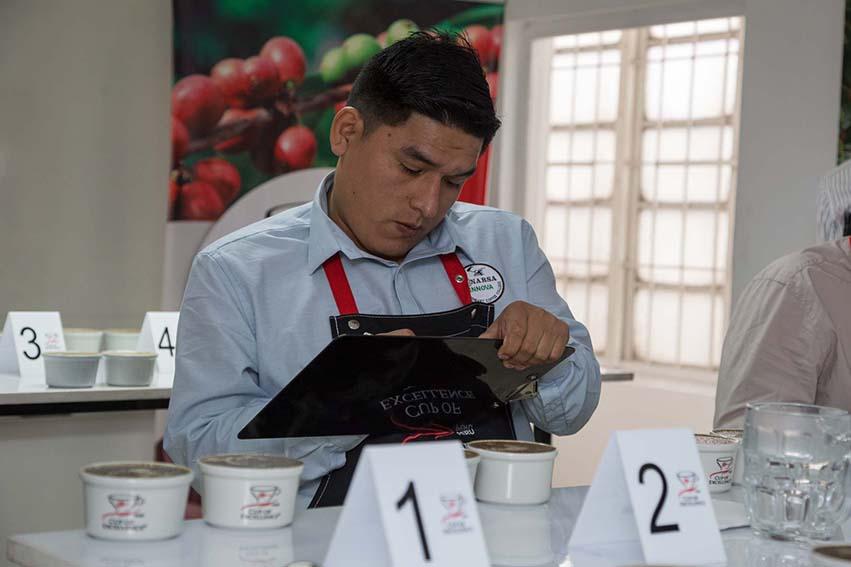Taza de Excelencia 2020: 36 variedades compiten por ser el mejor café del Perú