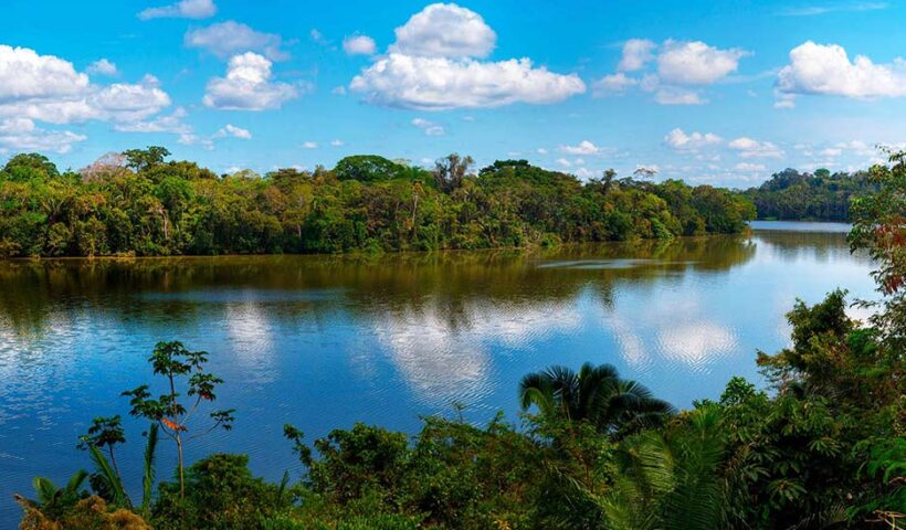 Reserva Nacional de Tambopata
