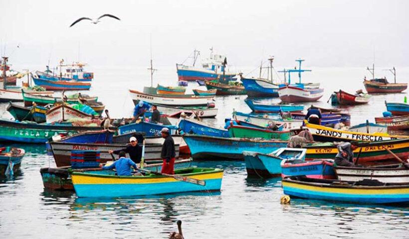 Perú presidirá el Comité del Año Internacional de la Pesca Artesanal y la Acuicultura 2022
