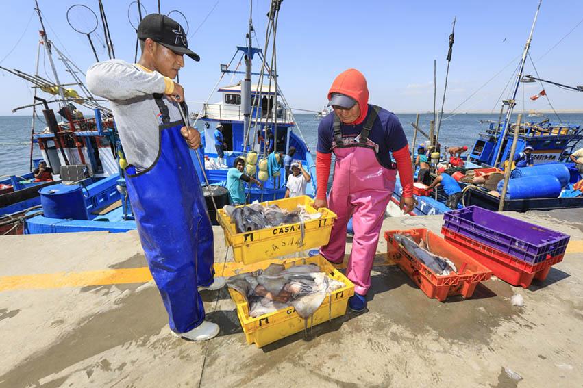 Flota asiática sigue siendo una amenaza para la pesca artesanal peruana