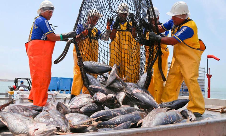 Sociedad Nacional de Pesquería confía en replicar resultados del 2020