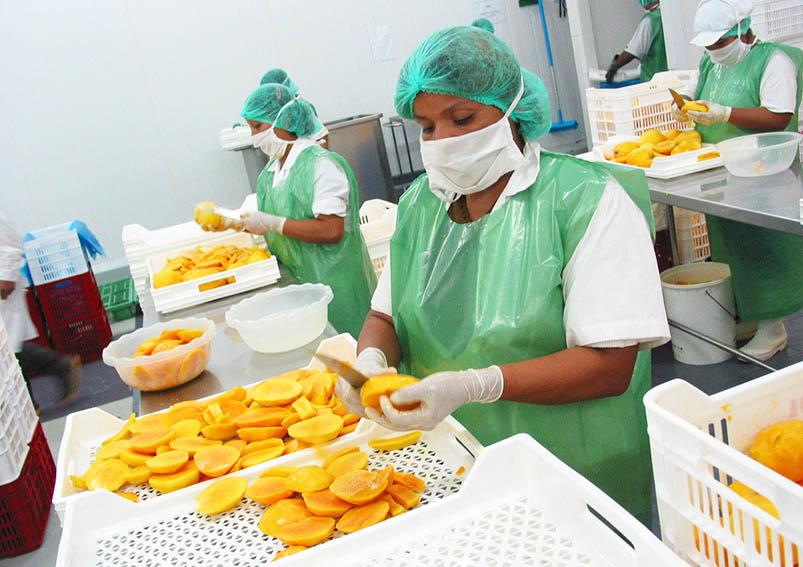 Agroexportaciones peruanas llegaron a 140 mercados el 2020