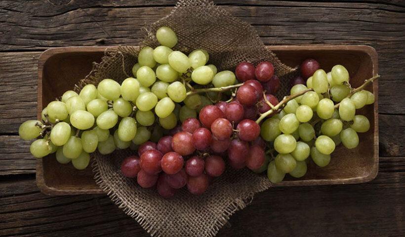 Productores peruanos de uva y cítricos podrán exportar a Argentina desde este año