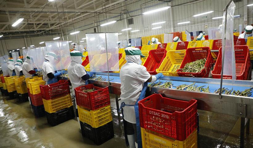 La agroexportación y el turismo son motores de la economía peruana